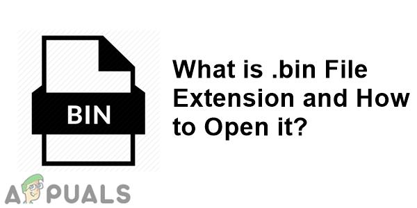 Что файл .bin и как вы его открываете?