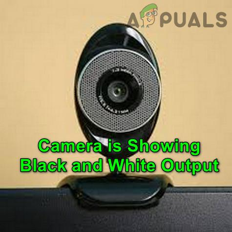 Как исправить вывод камеры в черно-белом монотонном режиме?