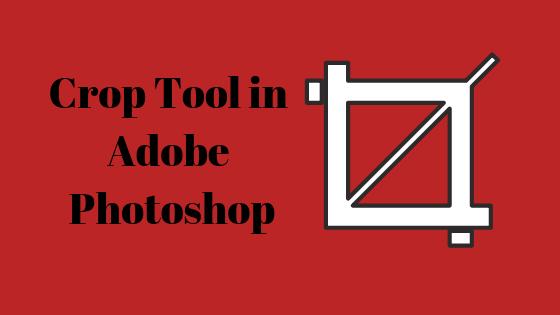 Как использовать инструмент кадрирования в Adobe Photoshop