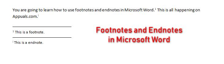 Как использовать сноски и концевые сноски в Microsoft Word?