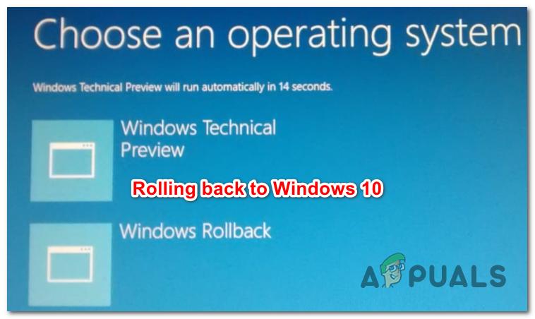 Как вернуться к Windows 10 с Windows 11 (без потери данных)